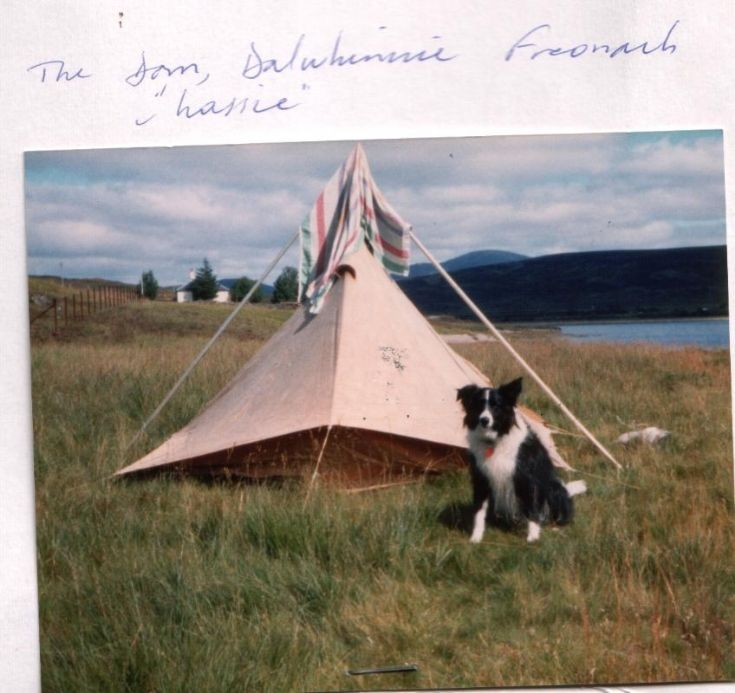 My tent and Lassie at the Shieling