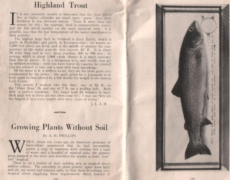 Highland Trout